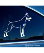 DOBERMAN PINSCHER - Vinyl dog window decal for car truck- Dobie love Bumper Sticker- RIGHT 5.5