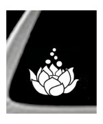 LOTUS FLOWER White 5