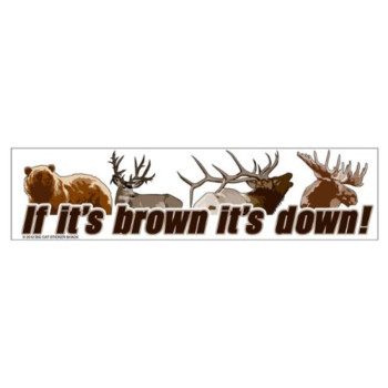 If it's brown it's down (Bumper Sticker)