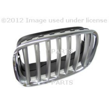 BMW Genuine Grill / Grille, front, left for Hybrid X6 X5 3.0si X5 3.5d X5 35dX X5 35iX X5 4.8i X5 50iX X5 M X6 35iX X6 50iX X6 M
