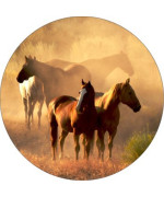 Horse #9 Spare Tire Cover