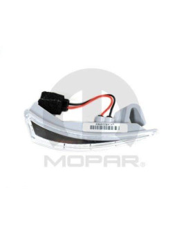 Side View Mirror Turn Signal Lamp Driver Side