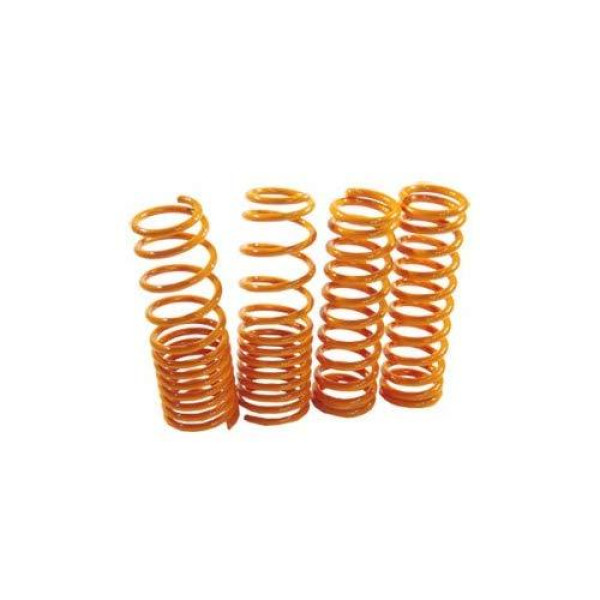 Buy Megan Racing Lowering Springs Acura RSX Base/Type S 02