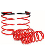 Skunk2 519-05-1672 Lowering Spring for Honda RSX
