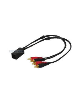 Nippon Pipeman 16 pin Wiring Harness for 2000+ Kenwood
